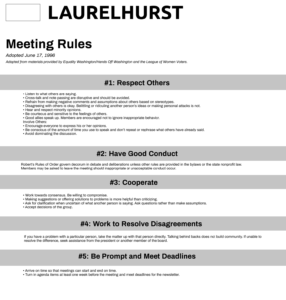 Meeting Rules(Desktop)